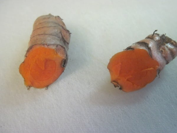 Sliced Fresh organic Turmeric