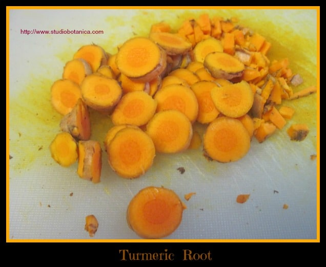 Turmeric root chopped SB