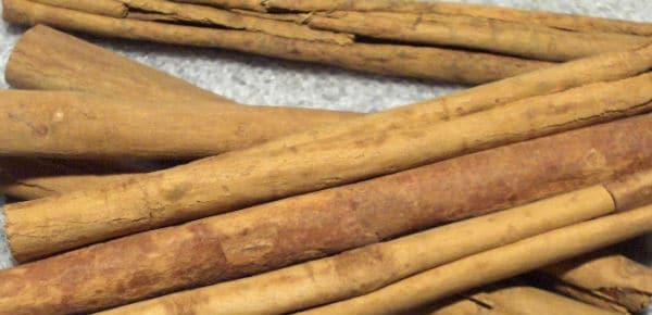 cinnamonSticksLeadPic