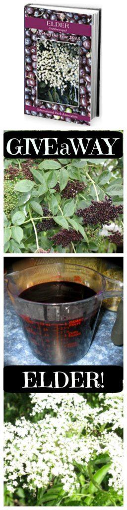 Elder Medicine Elder Herb of the Year 2013