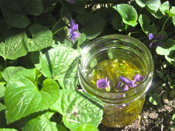 Violet Oil Feature