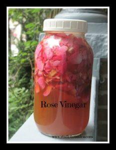 RoseVinegarSB
