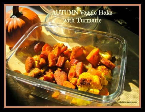 Autumn veggie bake with Turmeric