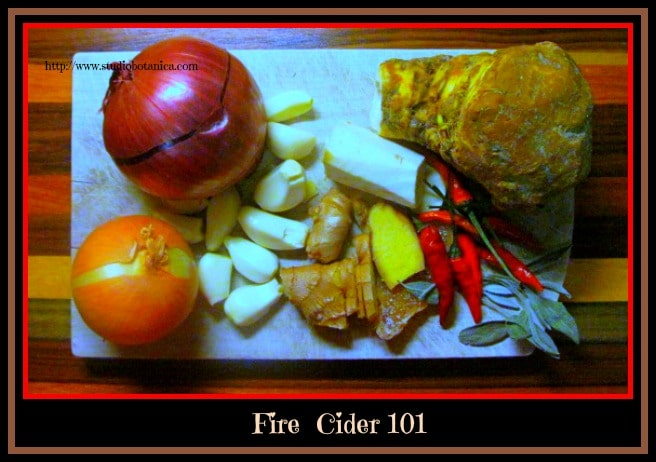 Fire Cider + Fire Cider Recipes