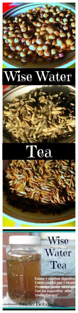 Wise Water tea