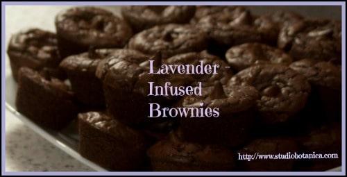 LavenderBrownies