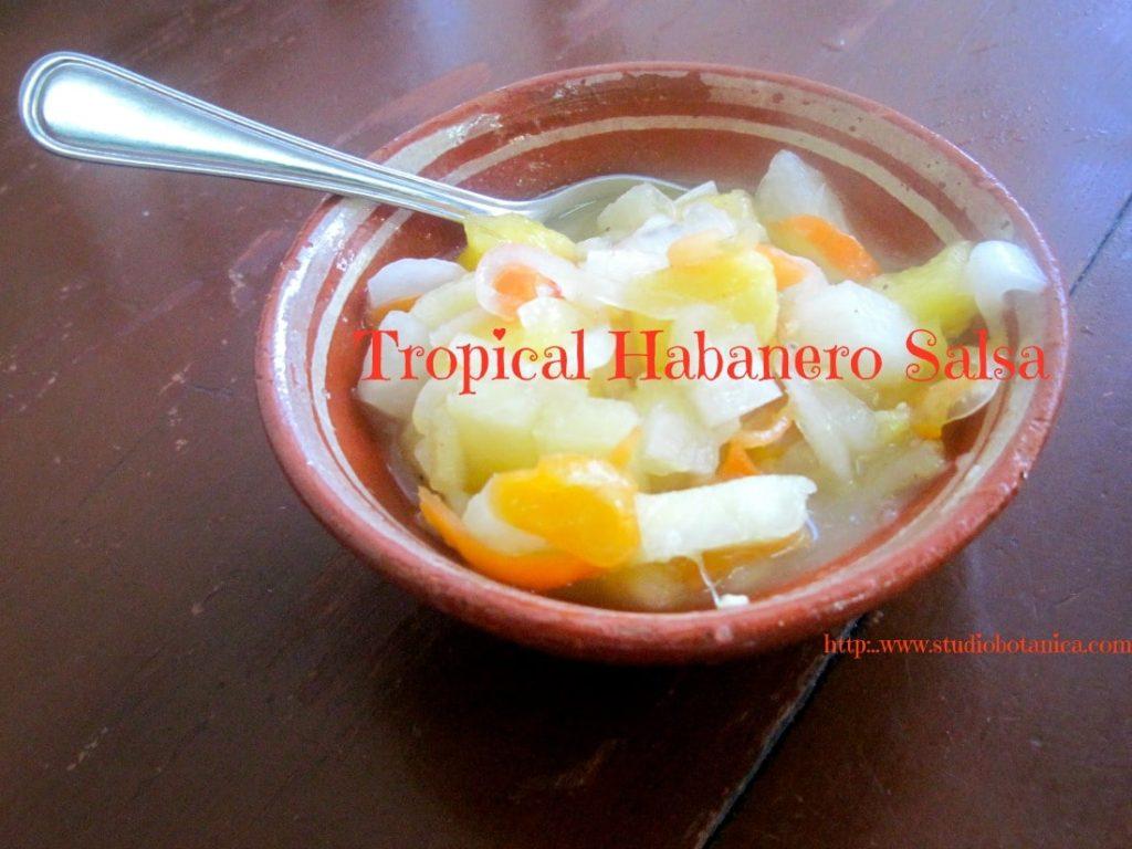 TropicalHabaneroSalsaFB