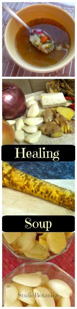 Healing Soup
