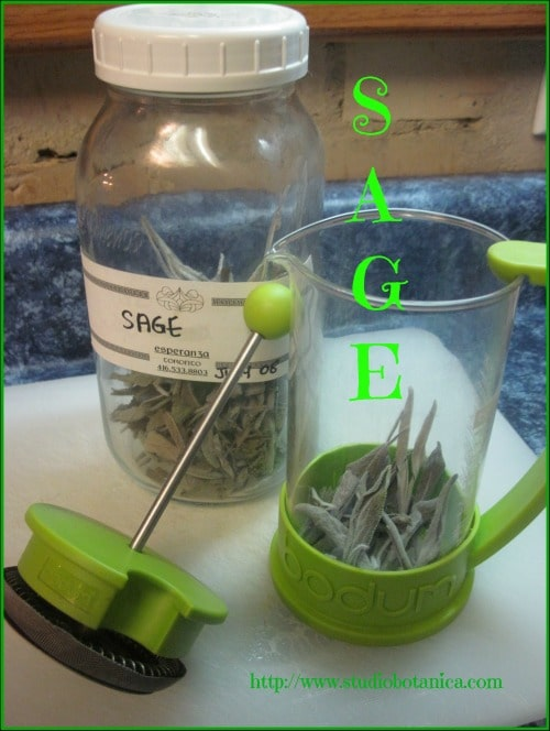 Sage tea sore throat remedy