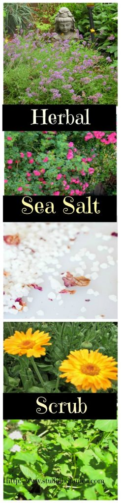 Herbal Sea Salt Scrub
