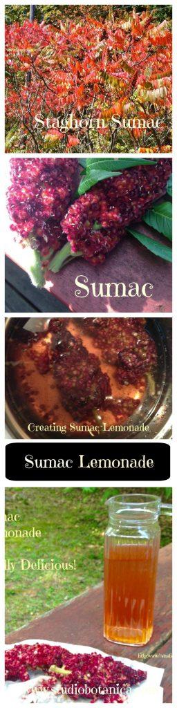 Sumac Lemonade