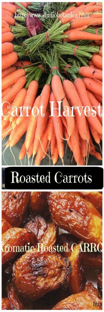 roastedcarrotssbv