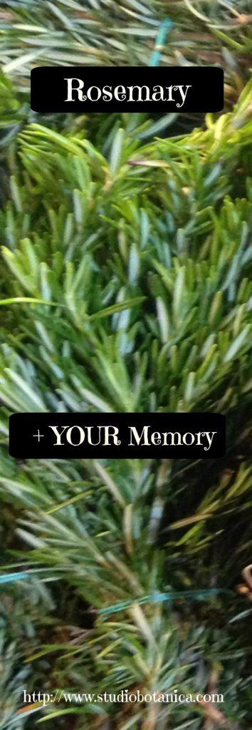 Rosemary + YOUR Memory
