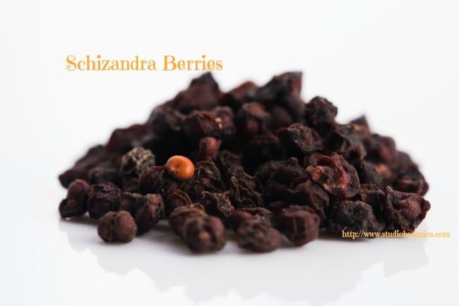 schizandra chinensis fruits isolated on white background